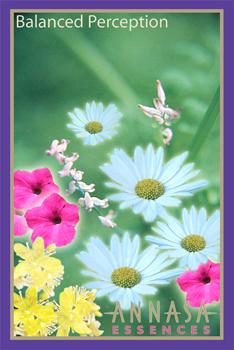 Annasa Flower Card