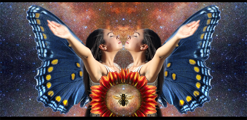 Designed to capture the idea of Law of Attraction, Like Attracts Like using the symbology of butterfly, woman with arms open, sunflower, bee, and universe. By Julia Stege for Magical Marketing promotions.