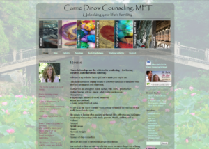 Carrie Dinow Before website