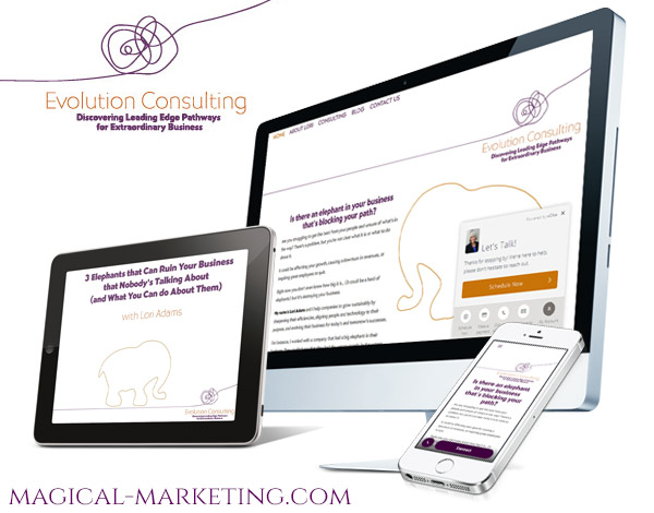 Branding and Website Campaign for Spiritual Business Consultant by Magical Marketing