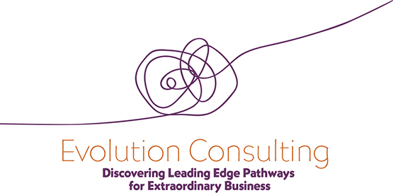 logo for Evolution Consulting by Julia Stege of Magical Marketing