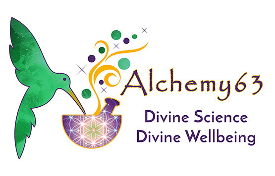 logo for Alchemy 63 by Julia Stege of Magical Marketing