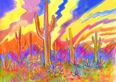 Saguaro National Monument 1996