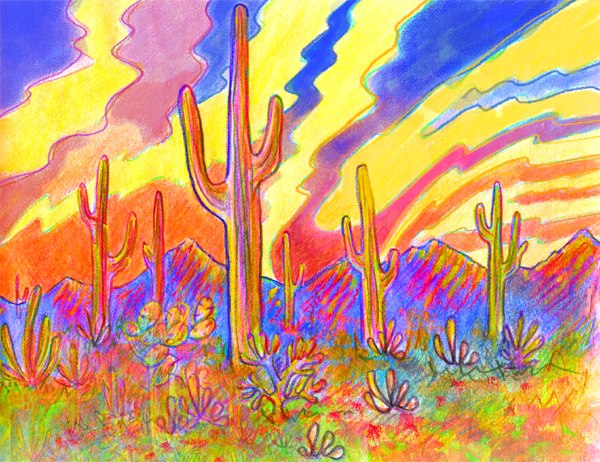 Saguaro National Monument by Julia D. Stege