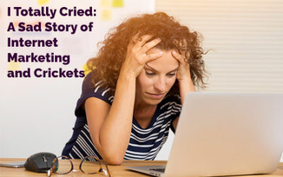 I Totally Cried.. A Sad Tale about Internet Marketing and Crickets